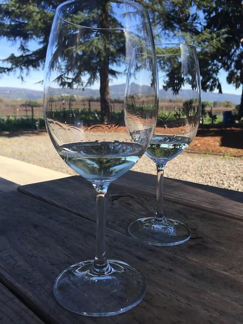 2013 Sauvignon Blanc - Andretti Winery