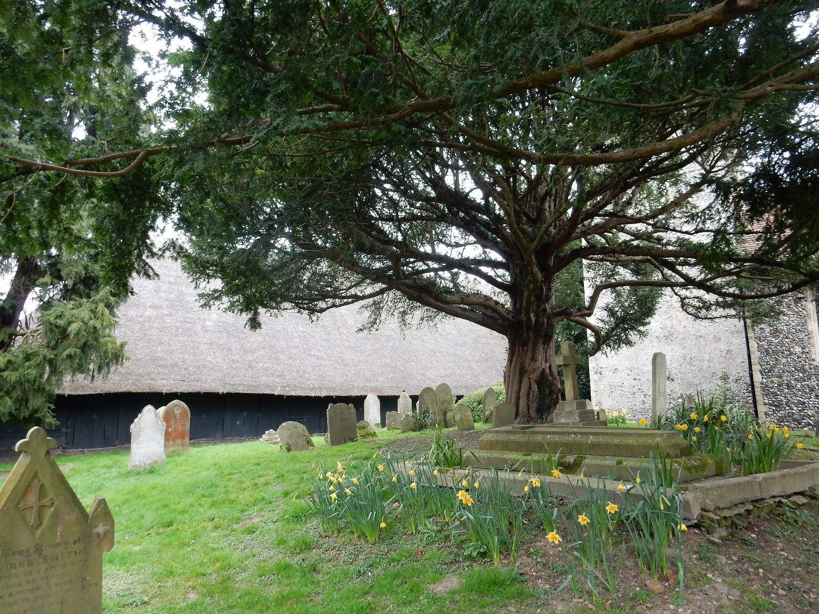 Littlebourne Churchyard Sturry Circular Littlebourne Churchyard