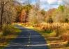 Walk Path