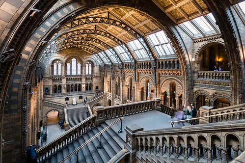 Natural History Museum - Stairs