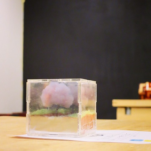 桜並木が見えたら正解。 #CubeEtude
