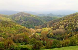 Spring landscape.... after the rain