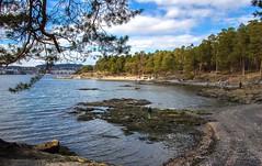 Paradisbukta (Paradise Bay) at Bygdøy, Oslo
