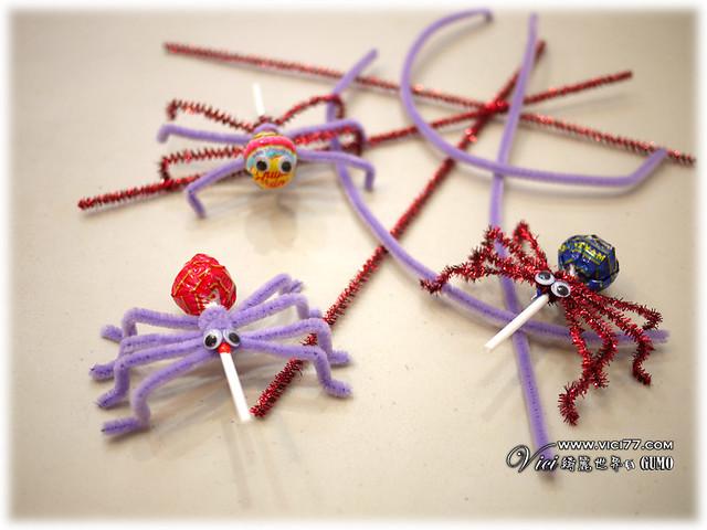 0331毛根蜘蛛025