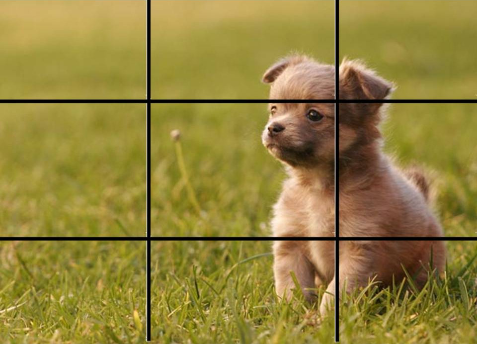 rule-of-thirds-grid as a great tip