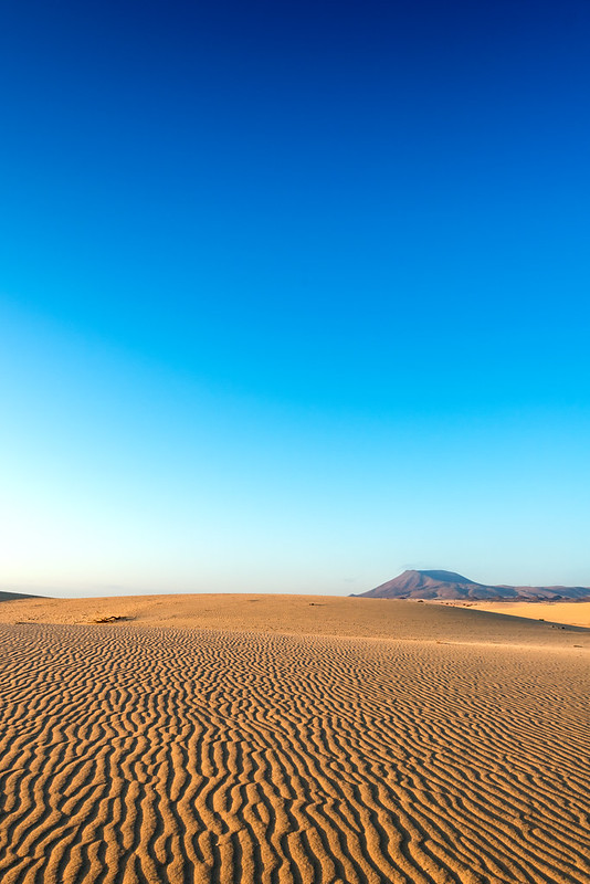Wüste bei Corraleja Fuerteventura
