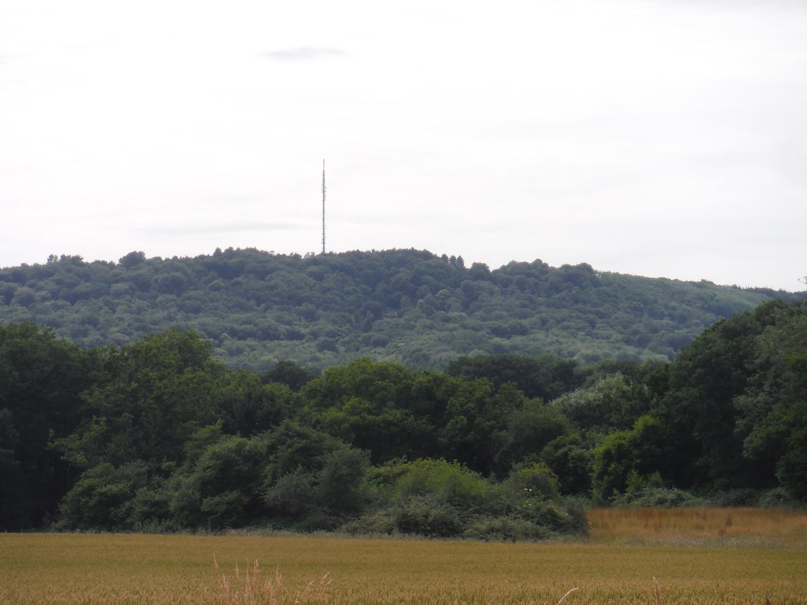 Bexleyhill SWC Walk 48 Haslemere to Midhurst (via Lurgashall or Lickfold)