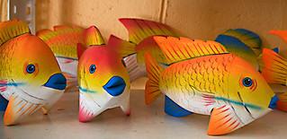 Fish of Wood