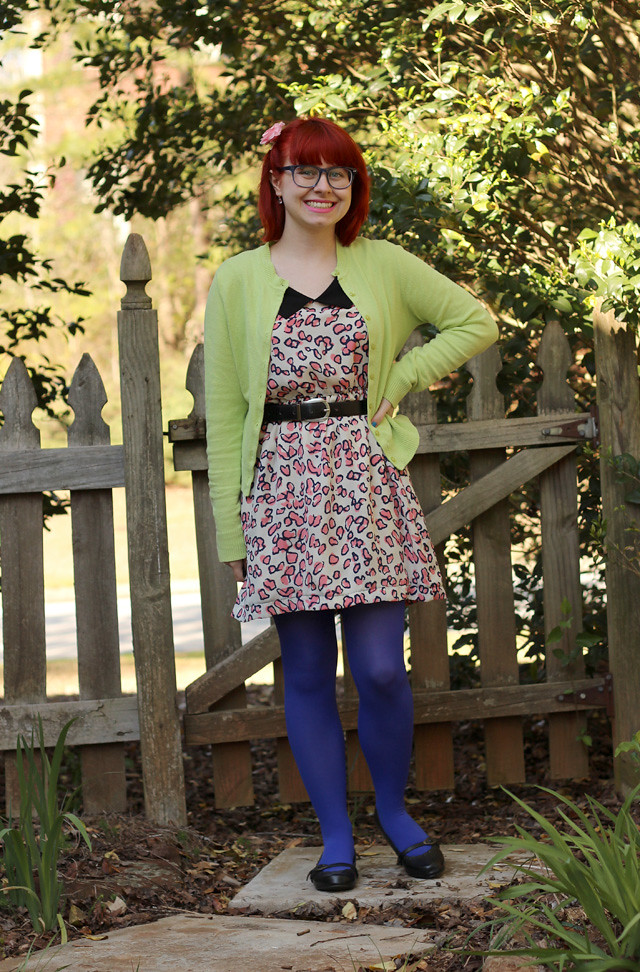 Lime Green Cardigan, Pink Leopard Print Dress, Blue Tights, and Blue Square Glasses