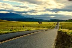 Highway 246