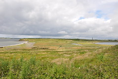SCATTERY ISLAND - The View from the Battery