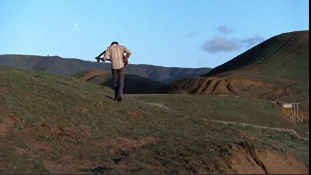 harold-and-maude-final-scene