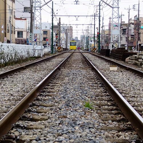 線路は続くようー #都電pw2015