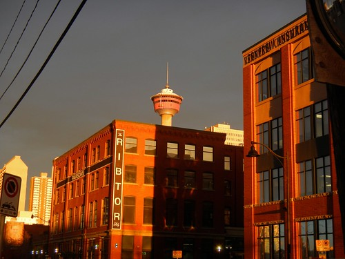 urban canada calgary sunrise downtown alberta 365 calgarytower
