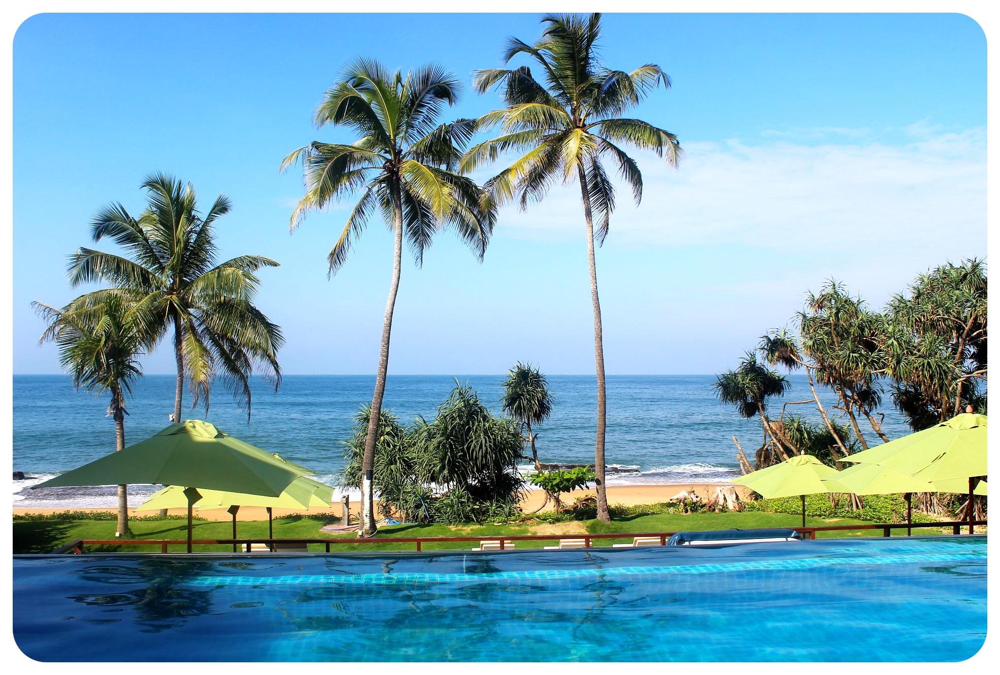 reefs edge hotel infinty pool1