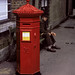 Victorian Pillar Box - Dorchester Dorset by tudedude
