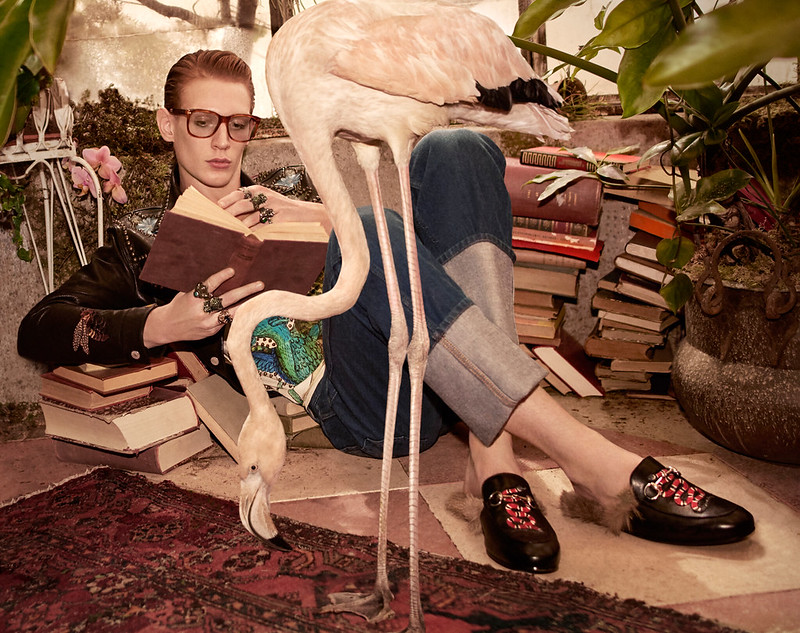 Gucci-2016-Pre-Fall-Campaign-001