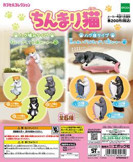 Epoch 「擁抱猫」逗趣又療癒轉蛋之作!ちんまり猫