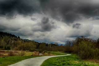 Stormy Day at Colony Farms