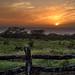 Hawaiian Ranch Sunset by Geoff Livingston