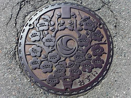 Miyada Nagano, manhole cover (長野県宮田村のマンホール)