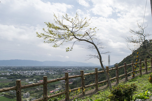 road sky mountain tree digital way skyscape landscape photo nikon scenery side picture taiwan p dslr 台灣 scape 道路 風景 尼康 花蓮 hualian 路 散步 爬山 2015 路上 sunlights 單眼 楓林步道 白天 柵欄 d5300