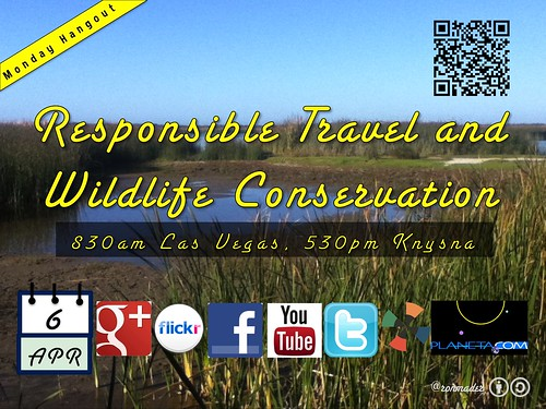 Monday, April 6 Hangout: Responsible Travel and Wildlife Conservation @knysnatourism @ThisTourismWeek @coffeebeansrout @respCPT @nvsagegrouse @friendsofnvwild