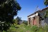 Solea Valley