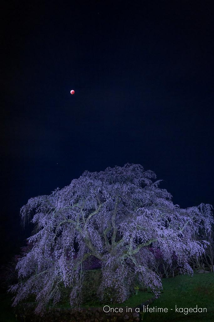赤銅色の月を背負い