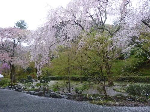 tenruji temple garden 3