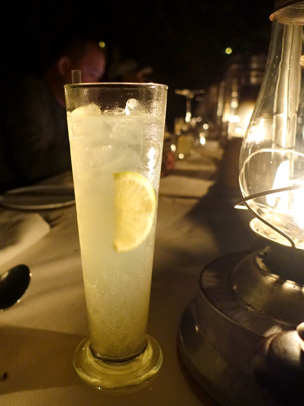 Schwepps Dry Lemon Gin Tonic