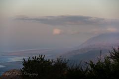 TANZANIA: Part 4 - Ngorongoro Crater and Manyara Lake