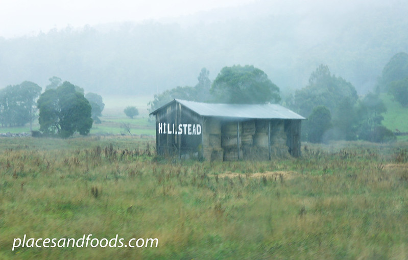 tasmania raining hut