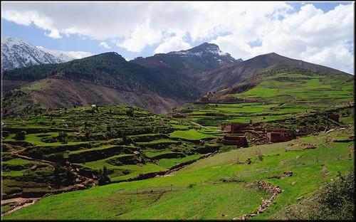 mountains green morocco maroc highatlas oukaïmeden