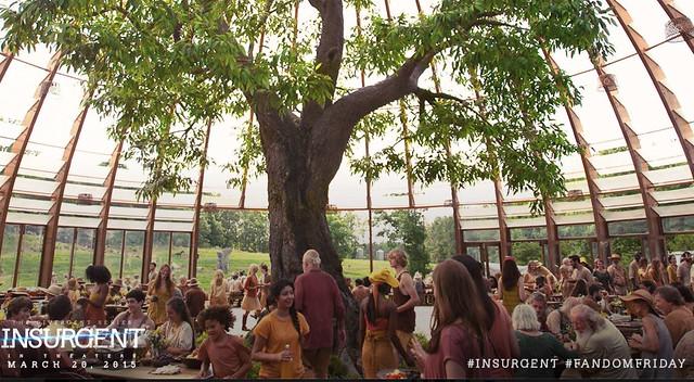 insurgent amity tree