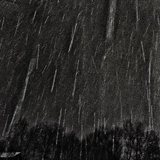 Night Snow 81/365