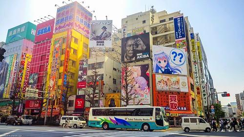 Akihabara Shops 17