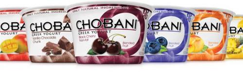 Chobani Simply 100 Yogurt