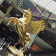 #instaPegasus by @4ever_m - .... .. علـيه ولهَـان ..، و شـوقي لـه علـى عيُـوني الحَـزينة بـان 💏 .. .... #alainmall #horses #instahorses #art #instaart #instaabudhabi #instaalain #loveit #mall #uae #design #instadesign #gold #fly #flyinghorse #l