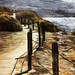 Coastal Walkway by Terry Pellmar