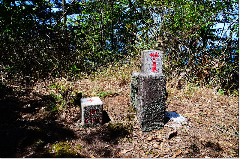 佳仁山山頂編號6615號的三等三角點及山字森林三角點 2