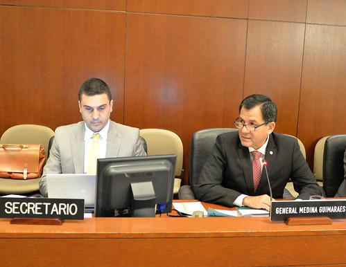 Viceministro del Interior de Perú presentó en la OEA preparativos para la II Reunión sobre Gestión Policial