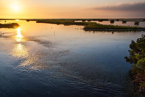 usa sun colour water coral sunrise keys florida clear mangrove floridakeys saddlebunchkeys