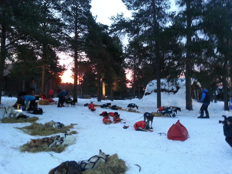 Morgenstund i Karasjok. Foto: Eirik Fløtlien