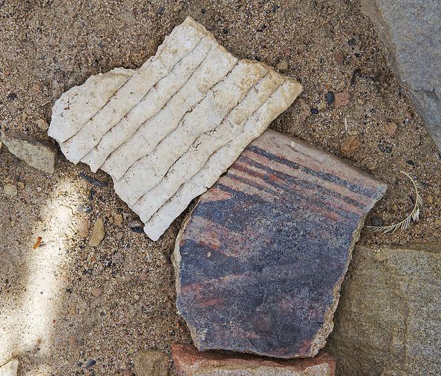 Pottery Shards 7d_1761