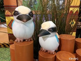 CIRCLEG 等埋我先玩喎 回歸原點 繪圖 新都城 MCP 小熊 東港城 海洋公園 樹熊 袋鼠 貓CAFE 南灣 玩在棋中 BOARDGAME 香香雞 (18)