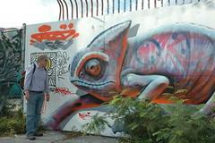 Graffiti,Miami 涂鸦