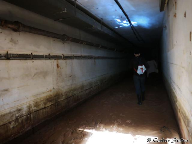 Talbot's Hill Bunker 09