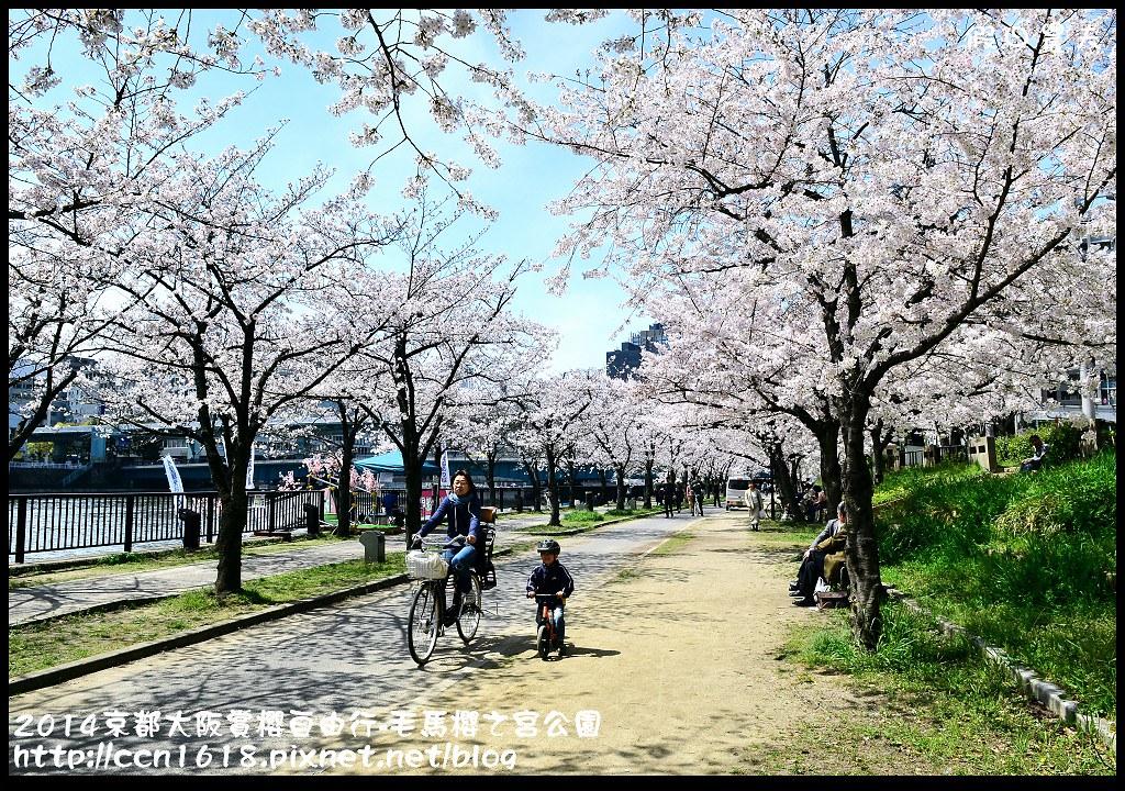 2014京都大阪賞櫻自由行-毛馬櫻之宮公園DSC_2004