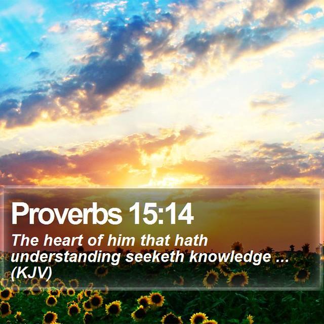 Daily Bible Verse - Proverbs 15:14